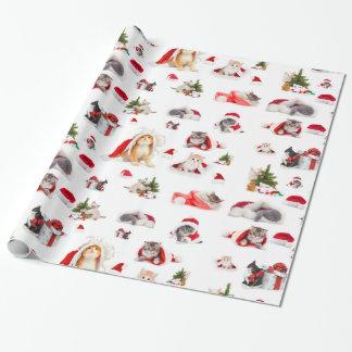 愛らしいクリスマスの子ネコの包装紙 ラッピングペーパー