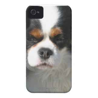 愛らしいチャールズ王スパニエル犬 Case-Mate iPhone 4 ケース