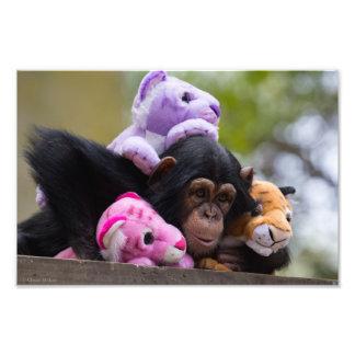 愛らしいチンパンジー及び友人 フォトプリント