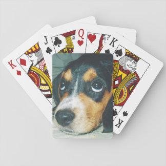 愛らしいビーグル犬の子犬 トランプ