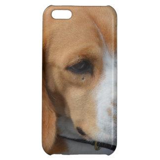 愛らしいビーグル犬 iPhone5C