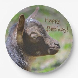 愛らしいベビーのヤギの誕生日 ペーパープレート