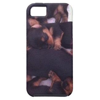 愛らしいヨークシャーテリアのベビー iPhone SE/5/5s ケース