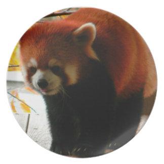 愛らしいレッサーパンダのプレート プレート