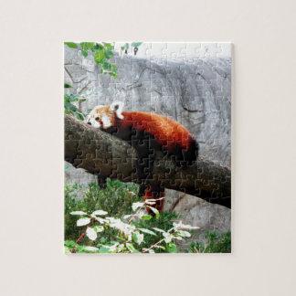 愛らしいレッサーパンダの動物の不精なおもしろい ジグソーパズル