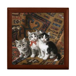 愛らしい子ネコの金カシのギフト用の箱 ギフトボックス