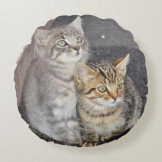 愛らしい子ネコは枕のあたりで設計します ラウンドクッション