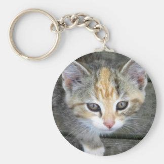 愛らしい子ネコ キーホルダー