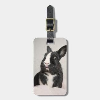 愛らしい白黒バニーウサギ ラゲッジタグ