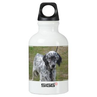 愛らしい白黒英国セッター犬 ウォーターボトル