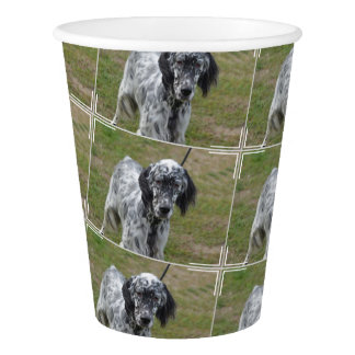 愛らしい白黒英国セッター犬 紙コップ