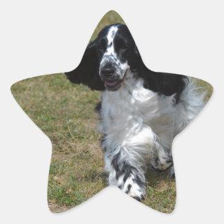 愛らしい英国のコッカースパニエル 星シール