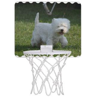 愛らしい西の高地テリア ミニバスケットボールゴール