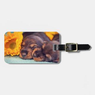 愛らしいDoxen睡眠の子犬 ラゲッジタグ