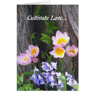 愛を培って下さい カード