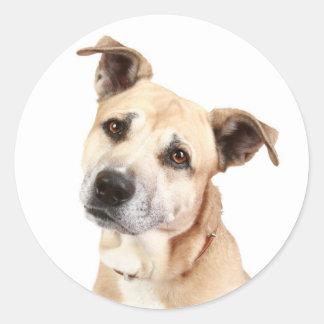 愛アメリカ(犬)スタッフォードテリア犬のステッカー ラウンドシール