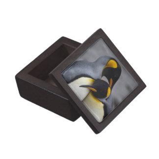 愛ギフト用の箱のキングペンギン ギフトボックス