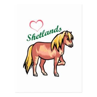 愛シェトランド諸島子馬 ポストカード