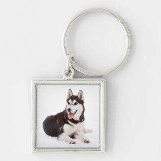 愛シベリアンハスキーの小犬のポートレートKeychain キーホルダー