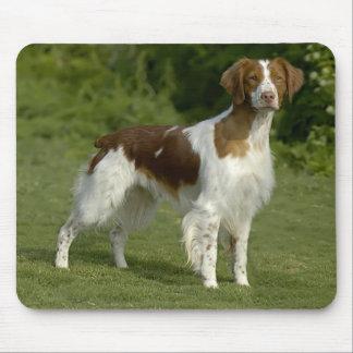 愛ブリッタニースパニエル犬の小犬のマウスパッド マウスパッド