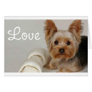 愛ヨークシャテリアの小犬の空白のなカード カード