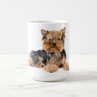 愛ヨークシャテリアの小犬-ヨークシャーテリア コーヒーマグカップ