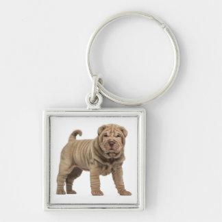 愛中国人のShar Peiの小犬Keychain キーホルダー
