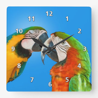 愛情のあるオウム スクエア壁時計