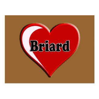愛犬家のためのハートのBriard ポストカード