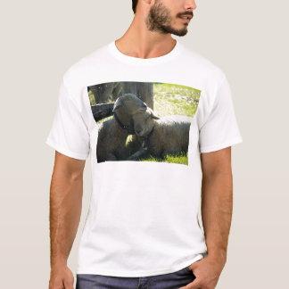 愛雌ヒツジのヒツジ Tシャツ
