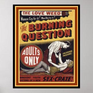 愛雑草: 非常に熱い質問16 x 20ポスター ポスター