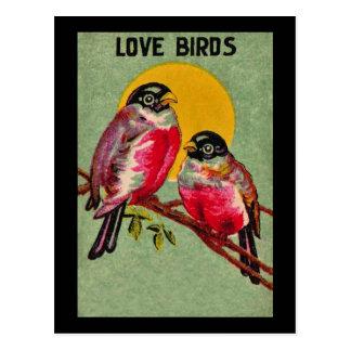 愛鳥の郵便はがき ポストカード