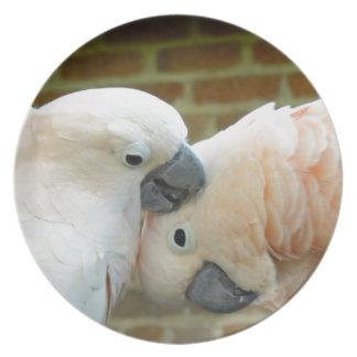 愛鳥 プレート