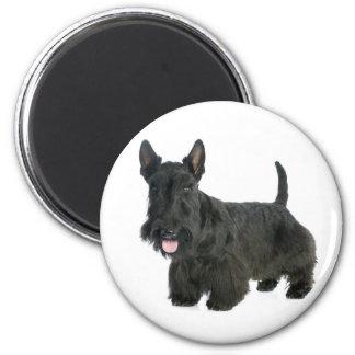 愛黒いスコットランドテリアの小犬の磁石 マグネット