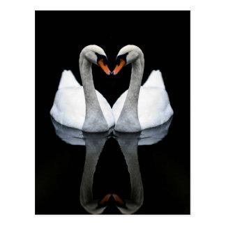 愛、ハートの形、白い白鳥の反射 はがき