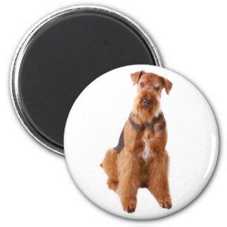 愛Airedaleの小犬の磁石 マグネット