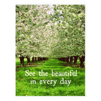 感動的な引用文のりんごの木の花 ポストカード