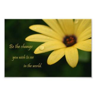感動的な引用文のデイジーの花の写真のプリント フォトプリント