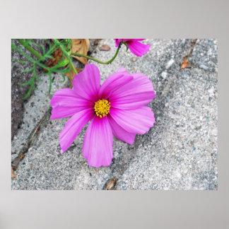 感動的な引用文のラベンダーの花 ポスター