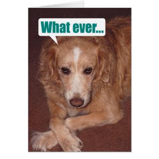 態度のバースデー・カードを持つおもしろいな雑種犬 グリーティングカード