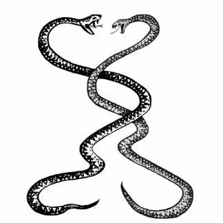 戦闘、大きい磁石の彫刻のヘビ 写真彫刻マグネット