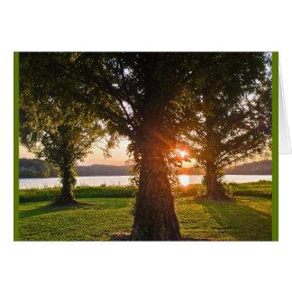 戴冠の栄光の日没 カード