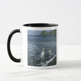 戻っている王室のなペンギン、(Eudyptesのschlegeli) マグカップ