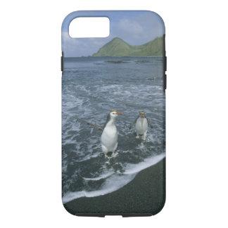 戻っている王室のなペンギン、(Eudyptesのschlegeli) iPhone 8/7ケース