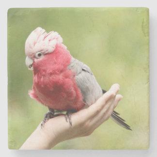 手の鳥 ストーンコースター