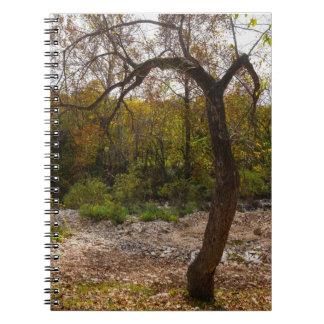 手を差し伸べる自然 ノートブック