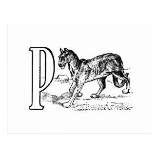 手紙Pのヴィンテージの引くこと ポストカード