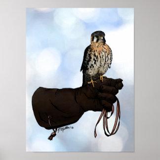手袋のイラストレーションのKestrel ポスター