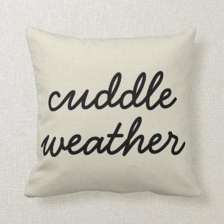 抱擁の天候 クッション