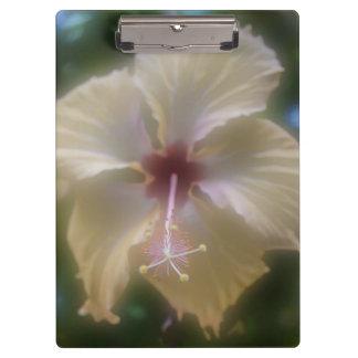 抽象的なハイビスカスの花 クリップボード